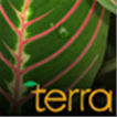 TERRA: The Nature of Our World Logo